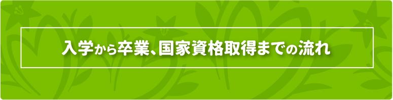 入学から卒業、国家資格取得までの流れ - nagare -