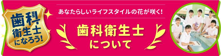 歯科衛生士について - shikaeiseishi -